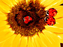 Lady bug family. Mom and dad lady bug looking over babies in a sunflower nest royalty free illustration