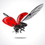 Lady bug graphic Vector Illustration