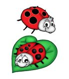 Lady bug on leaf. Illustarion of two lady bugs. One is sitting on leaf stock illustration