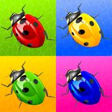 Lady bug in monroe style Stock Photography