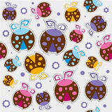 Lady bug Pattern. Lady bug colorful Pattern on gray background Royalty Free Stock Image