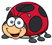 Lady bug. Vector illustration of cartoon Lady bug Royalty Free Stock Photography