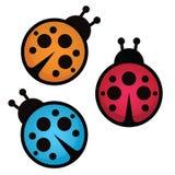 Lady bug. Vector illustration. Lady bug isolated on white background. Vector illustration Stock Photo