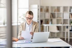 Lady concentrated on report royalty free stock photos