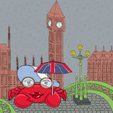 Lady crab on Westminster bridge. Under Union Jack umbrella Royalty Free Stock Photo