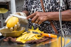 Lady cutting Mango. Thai lady slicing mango for her street food sales. Using a knife for cutting the fruit in Bangkok Thailand stock image