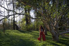 Lady dancing in a woodland in evening stock photo
