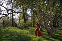 Lady dancing in a woodland in evening stock photos