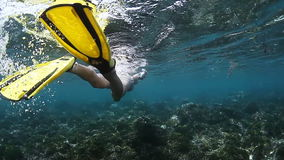 Lady diver. Young lady finning underwater in tropical sea over coral reef stock video