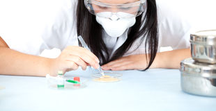Lady doctor or chemist in laboratory Stock Image
