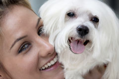 Lady with dog. A blond lady with a maltese dog Stock Photo
