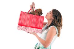 Lady with dog isolated on white background Royalty Free Stock Photography
