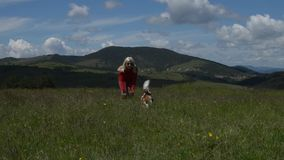 Lady and Dog. Lady playing with her dog (Cavalier King Charles Spaniel) running toward camera, in a spring mountain meadow, with hilly landscape behind stock video