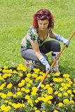 Lady doing some gardening Stock Photos