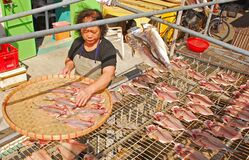 An elderly Lady drying fish in traditional way