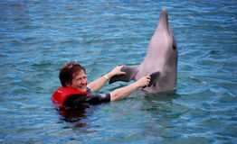 Lady enjoying her encounter with a dolphin Stock Image