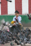 Lady feeding the pigeons Royalty Free Stock Photo