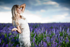 Lady in a field. Young lady in a lavender field - shallow DOF, focus on face Stock Photography