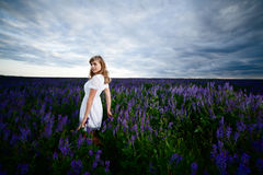 Lady in a field Stock Photos