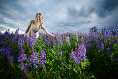 Lady in a field Royalty Free Stock Image