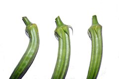 Lady Finger (Okra). Okra (lady finger) in isolated Stock Image
