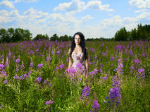 Lady in a flower meadow royalty free stock image
