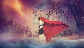 Lady From Fairytale Royalty Free Stock Photography