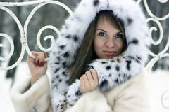 Lady in fur Stock Image