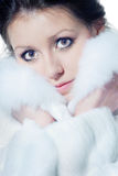 Lady in the fur coat Stock Images