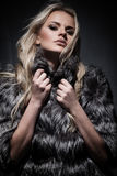 Lady in fur coat Stock Photography