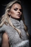 Lady in fur coat Royalty Free Stock Image