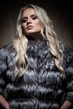 Lady in fur coat Royalty Free Stock Photos