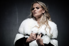 Lady in fur coat Stock Images