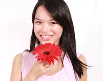 Lady with gerbera flower. Beautiful young lady with gerbera flower isolated on white background Stock Images