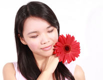Lady with gerbera flower. Beautiful young lady with gerbera flower isolated on white background Royalty Free Stock Image