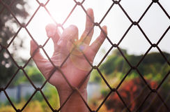 Lady or girl hand catching iron bar with lens flare, imprison or. Need freedom feeling royalty free stock images