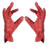 Lady Gloves Royalty Free Stock Photo