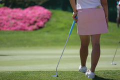 Lady golf putting Royalty Free Stock Photography
