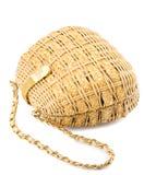 Lady hand-bag Stock Image