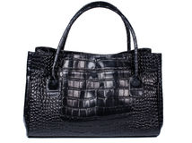 Lady handbag in black color made of crocodile leather Stock Images