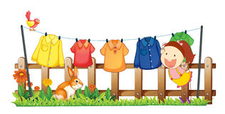 A lady hanging her clothes near the garden with a rabbit Royalty Free Stock Photo
