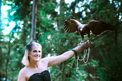 The Lady with the harris hawk. Wonderful harris hawk with a model Royalty Free Stock Image