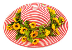 Lady Hat. Red and white color with flower Royalty Free Stock Photography