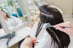 Lady having hair dyed. Adult stock image