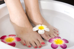 Lady having pedicure Stock Photos
