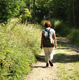 Lady Hiker. Walking along an English wooded footpath with wild flowers growing along the bank Stock Photography