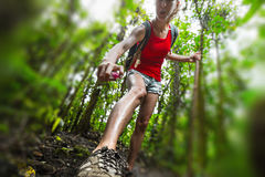 Lady hiker in the forest Stock Image