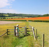 Lady Hiker by a gate with poppy fields. Lady Hiker with backpack standing by a gate in the Chiltern Hills in England royalty free stock image