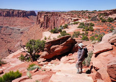 Lady Hiker looking over Canyonlands Royalty Free Stock Photo