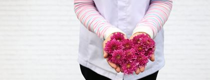 Lady holding heart shape pink flower on her hand on white brick background for love and care design concept with copy space royalty free stock photos